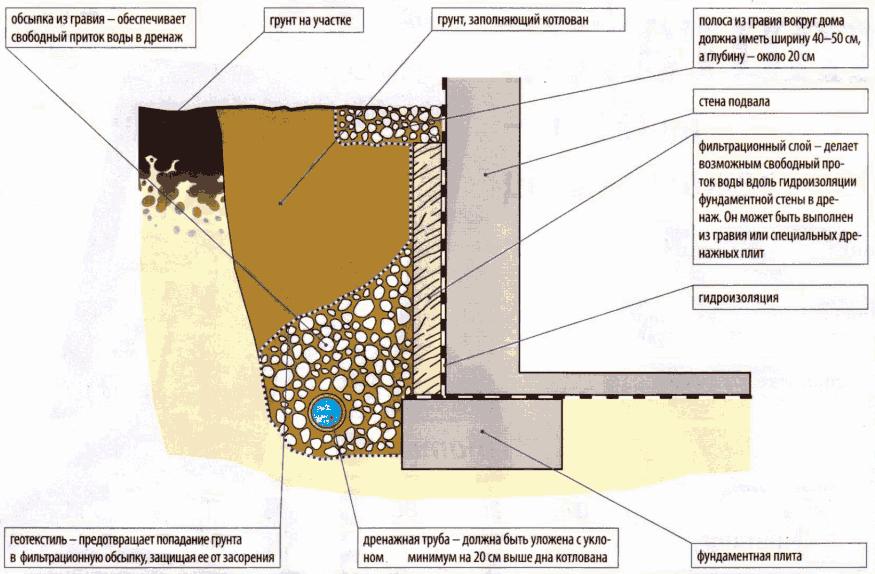 пристенная структура в разрезе