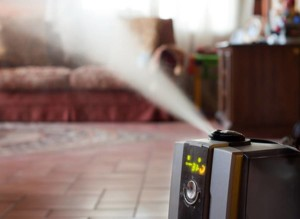 Увлажнение воздуха в квартире - фактор здоровья | Блиц-ремонт