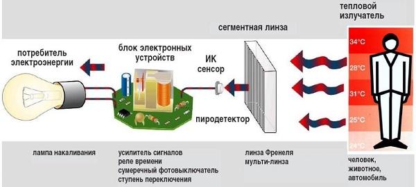 Принцип работы ИК детектора движения